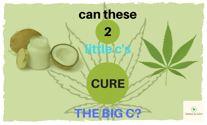 cure cancer with coconut oil and cannabis - the Stan Rutner story